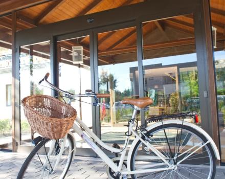 Bike at the Best Western Modena District